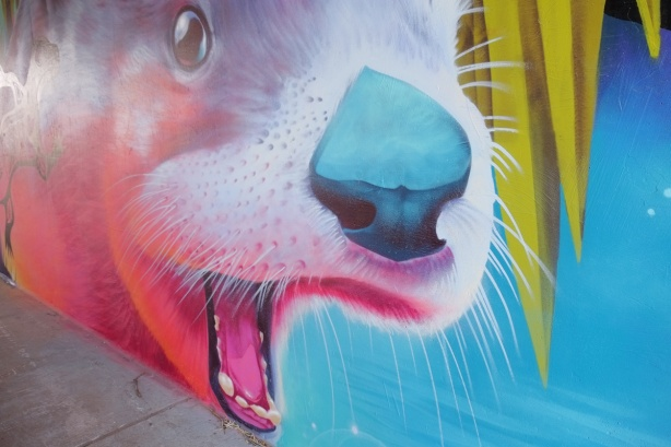 part of a Nick Sweetman mural on 30th street, close up of the face of a creature with white whickers and a blue nose