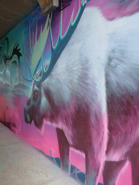 part of a Nick Sweetman mural on 30th street, a moose or elk with large antlers