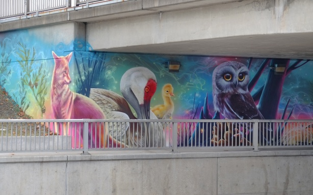 part of a Nick Sweetman mural on 30th street, a fox, a duck with yellow duckling and a purple owl