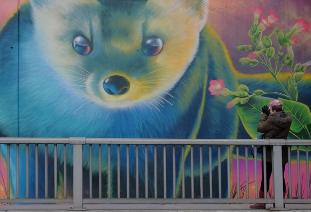 part of a Nick Sweetman mural on 30th street, a small furry animal bside a plant with pink flowers, as well as a person standing on the sidewalk and taking a picture of the mural