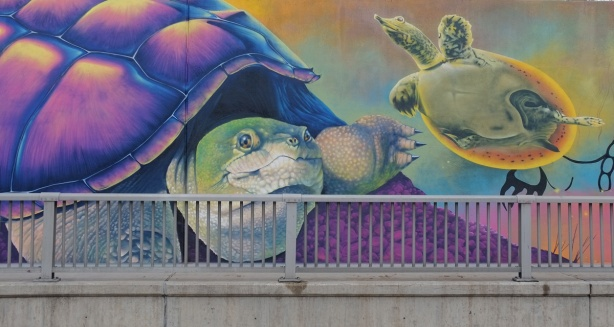 part of a Nick Sweetman mural on 30th street, a large turtle and a smaller turtle, by the railing along side the sidewalk