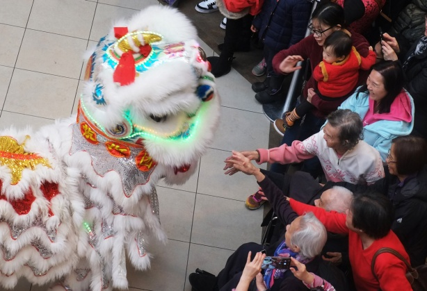 people in the audience reach out to touch a white lion costume with two people under it, part of a new year celebration