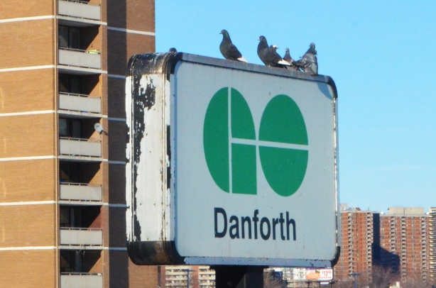 large white sign with green GO logo, Danforth station. a group of pigeons is sitting on top of the sign.