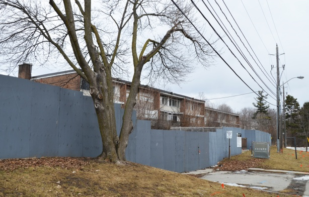 a tall tree, winter time, stands in front of a grey plywood fence in front of a three storey brick rental apartment building that is empty and will be torn down