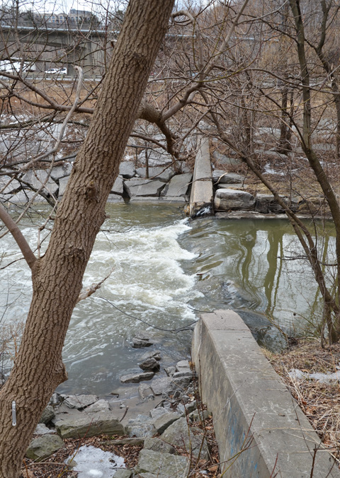 water flows over a low concrete dam on the Don River, winter time, but no snow or ice, no leaves on the trees,