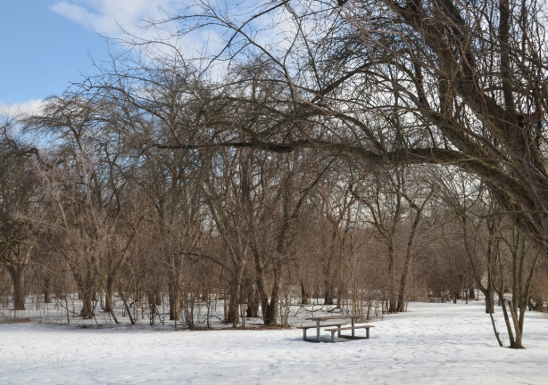 a picnic bench ina park in winter with snow on the ground