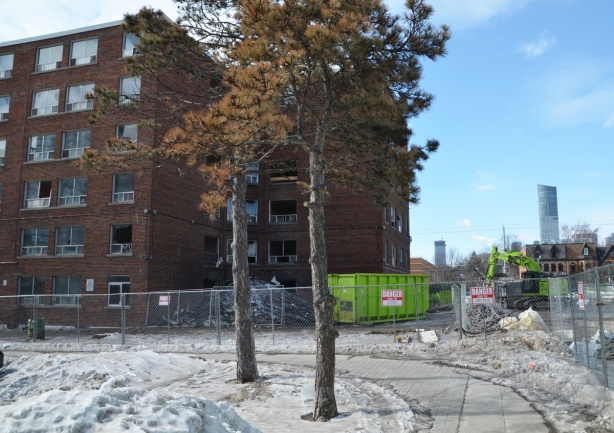 two trees standin front of a construction site, green bin, fence around building next to be demolished in Regent Park