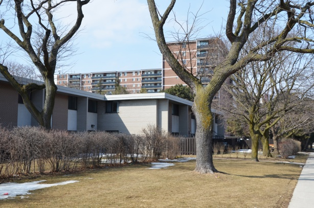 1960's low rise, flat roofed townhouses in front, with red brick apartment building behind, large trees, winter, no leaves, grassy area in front