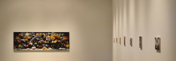 a large horizontal painting on a beige wall, of fish and coral in an aquarium, also some smaller paintings in black and white along the side wall