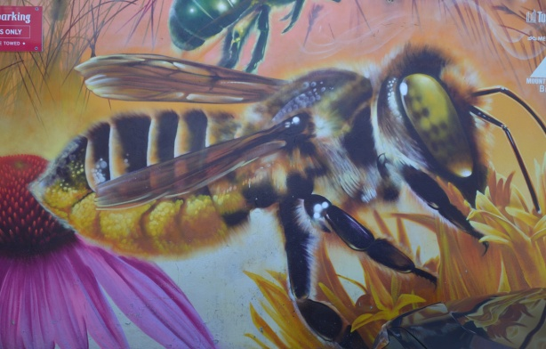 large painting of a bee on a flower, part of a mural, leaf cutter bee