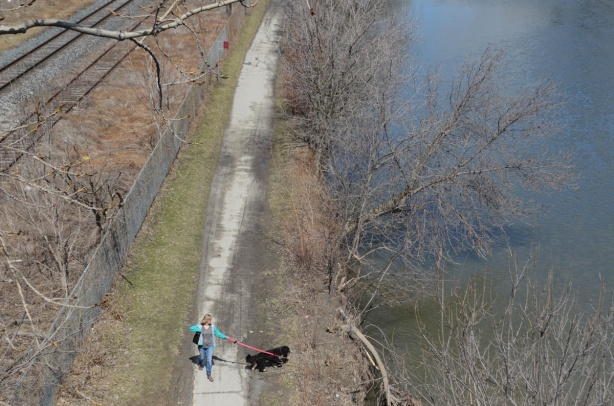 looking down from a bridge, a woman walks her black dog along a path beside the Don River, also train tracks running parallel to the path and river