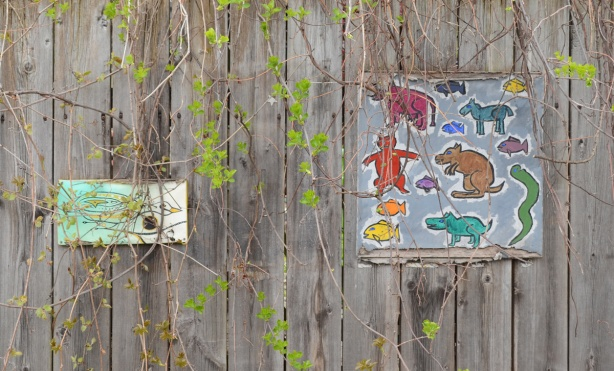 two small paintings on a wood fence, with vines growing in front of them.