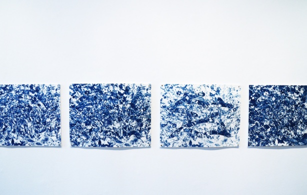4 cyanotype prints (blue) on a gallery wall