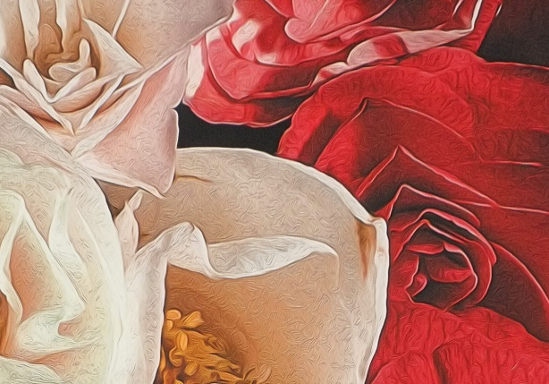close up of photo of a red flower and a white flower that has been manipulated using digital painting techniques