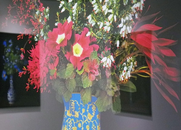 picture of a blue vase with red and white flowers, framed on a gallerywall, reflections of other pictures in the glass, black background