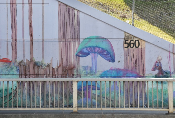 part of a mural by Christopher Ross on an underpass wall in pinks and blues, the end piece of the mural, mushrooms