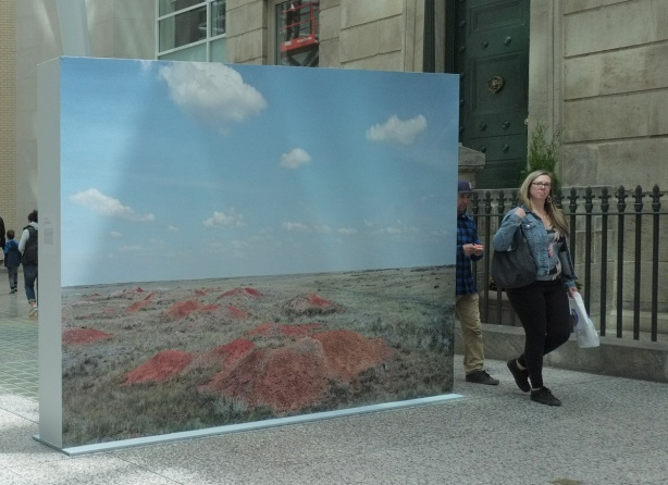 a couple walk past a large picture, small reddih mounds of dirt on a barren grassy field, flat land, no trees or other plants