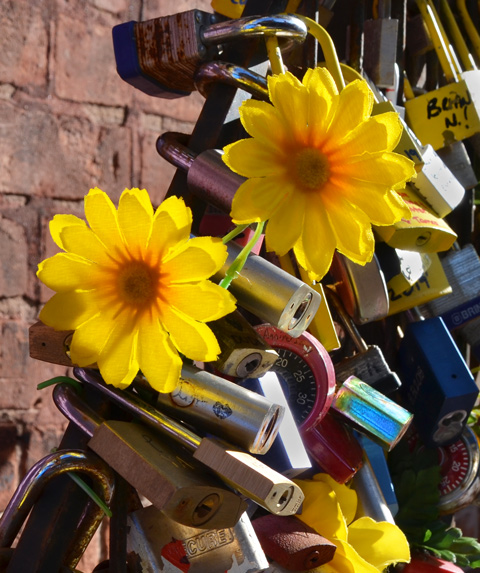 fake yellow flowers placed by some locks