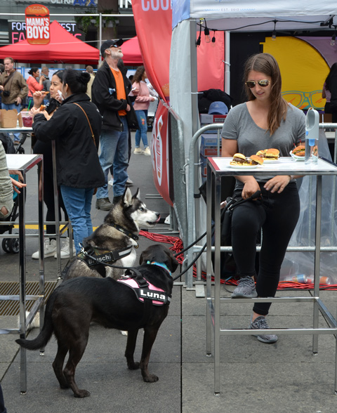a woman sits at a high table with three small burgers on it, two dogs are beside her on the ground but looking up