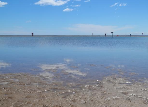 a flooded Woodbine Beach