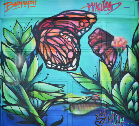 painted mural in a lane, butterflies and milkweed plants