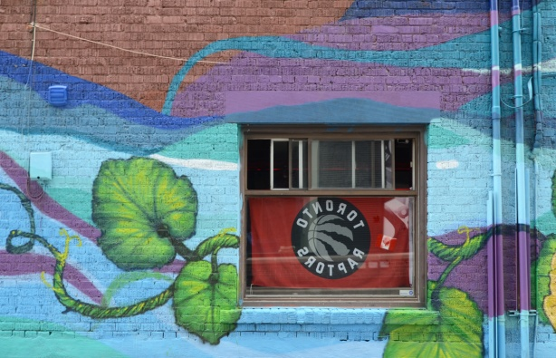 a window in a brick wall, Raptors flag inside but shows backwards outside, mural painted around the window in blues with green leaves and vines