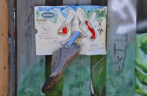 tacked to a wood fence is an old wood shoe form that someone has turned into an exhibit of a fossilized skull and horn, complete with drawings of the animal that it came from