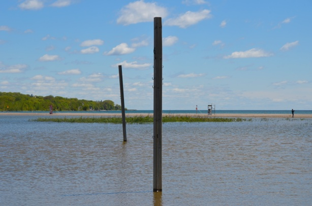 a flooded Woodbine Beach because of high levels of water in Lake ontario, poles in the water for volleyball courts, nets, but too much water