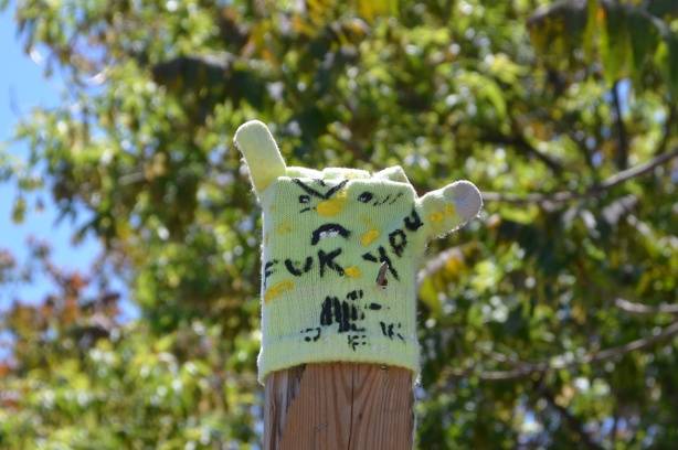one single glove with a face drawn on it and fuk you written on it, stuck on the top of a wood fence post