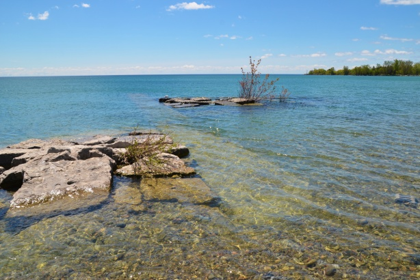 rocks and pebbles along the shore of Lake Ontario, a small island of rocks with a small tree growing on it