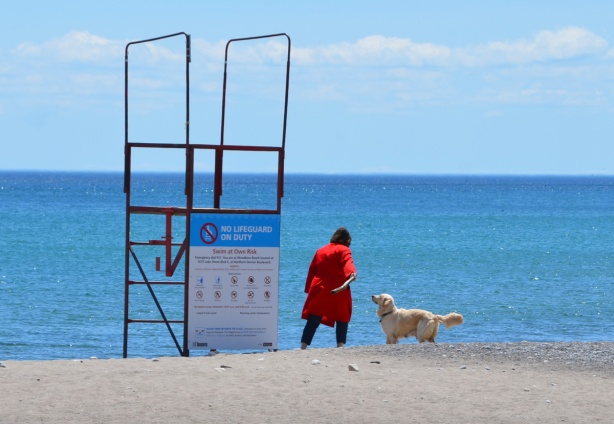 a woman in a bright red coat is about to throw a large stick into Lake Ontario for her dog to chase, empty lifeguard station beside her