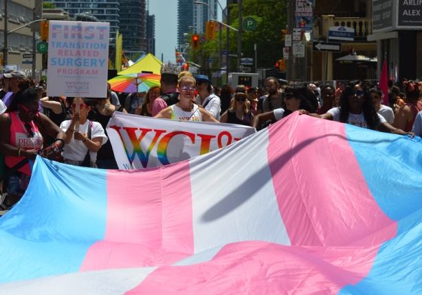 women holding a large transexual flag to carry in a parade