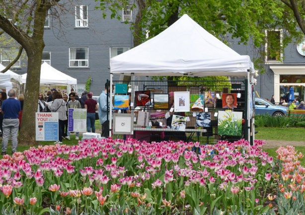 a large bed of pink and white tulips in front of a white tent (roof only) with paintings on the side that are for sale, Riverside Art Fest