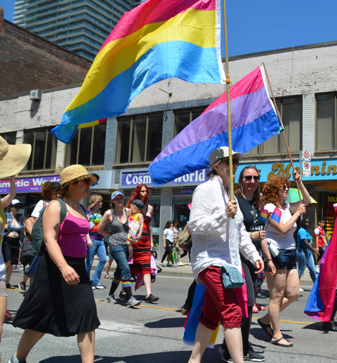 people carrying flags in dyke march