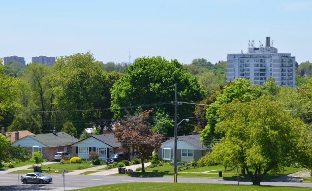 view from the top of a hill, street, houses, trees, and the CN Tower in the far distance