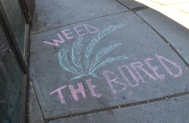 chalk drawing on a sidewalk that says weed the bored