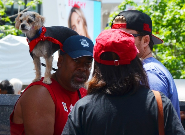 a small dog with a red scarf around its neck stands on a man's shoulders as he talks to another person