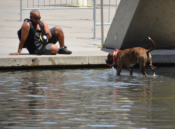a balding black man sits on the edge of the pool at Nathan Philips square, taking a picture of his dog who is in the water. Dog has Canada flag bandana on