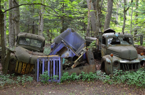 car and truck graveyard,