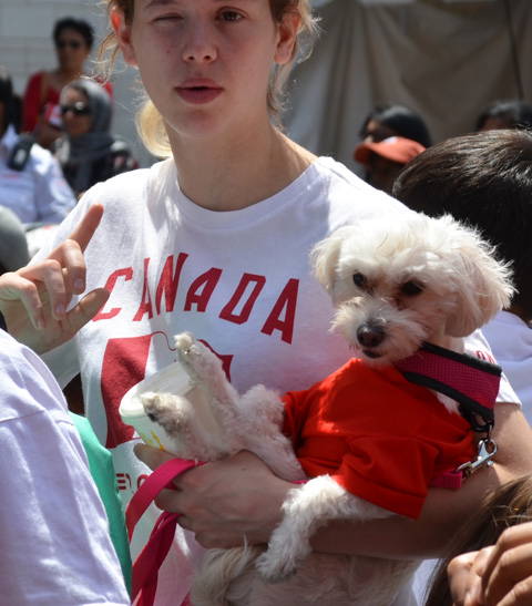 a young woman in a red and white Canada t shirt holds a small white dog with a red leash and red outfit
