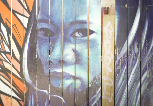 on a fence that is vertical slats of wood, a portrait of a woman in blue