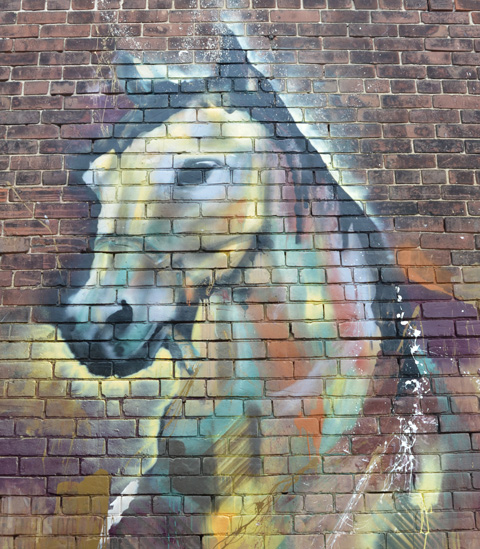 mural street art painting of a horses's head and neck in Milky Way alley