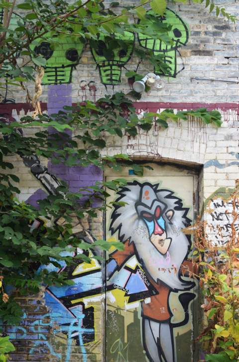 painting of character from Disneys Lion King on door in alley, with paintings of little aliens across the top of the building, ivy growing on the walls