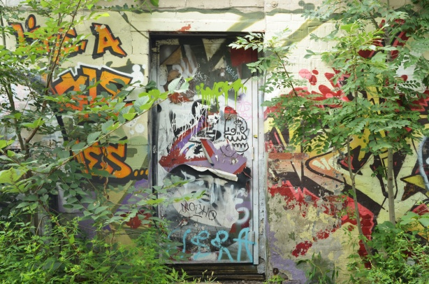 a door covered with graffiti that is closed, greenery is starting to grow upo and around the door, painted murals on both sides of the door that are difficult to see