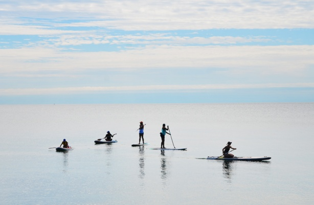 a group of five women each on their own paddleboard, very calm water of Lake Ontario just off the shore, two re standing, two are sitting on the boards, and one is kneeling,