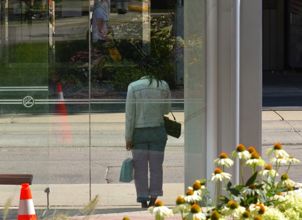 flowers in the foreground, a woman standing alone in a bus shelter, reflections in the shelter of the flowers