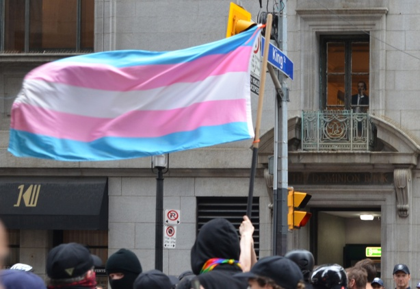 a man on the phone looks out a window of an upper storey, overlooking a protest on the street below including a large trans flag in pale blue, pink, and white stripes