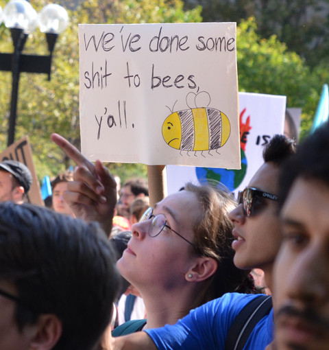 We've done some shit to bees y'all