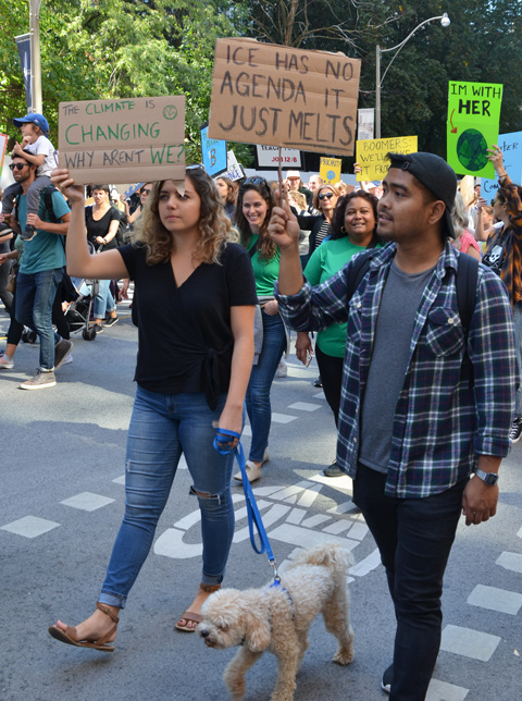 a couple walking their white dog as the march in a walk, people at Toronto climate strike, walking along Wellesley street with signs, they are both holding signs