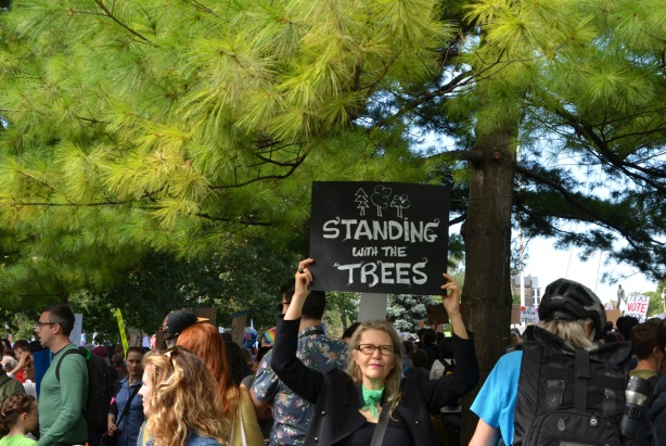 standing under some pine trees is a woman who is holding up a sign that says standing with the trees